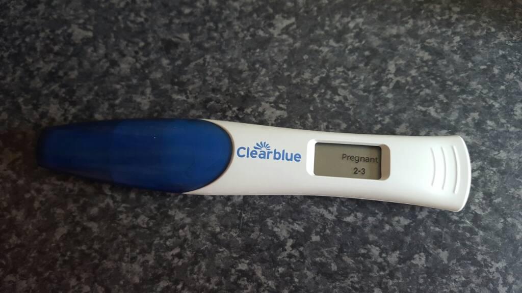 test gravid